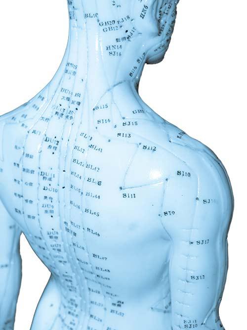 Darstellung möglicher Akupunkturpunkte